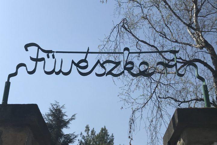 PEST_fuveszkert_01